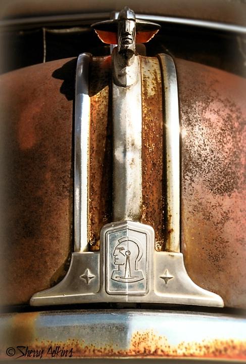 Pontiac Chief - ID: 9947506 © Sherry Karr Adkins