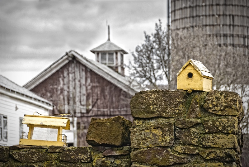 This Housing Market is for the Birds