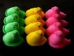 March of the peep...