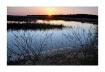 Sunrise Marsh, E...