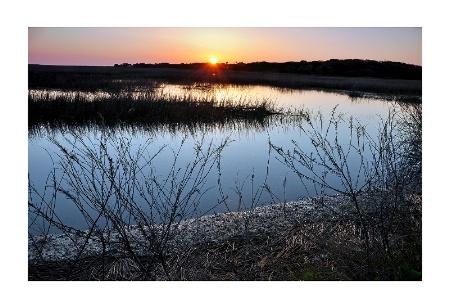 Sunrise Marsh, Edisto Island, SC