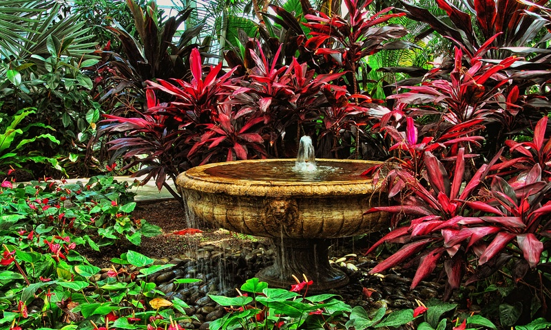 Roger Williams Botanical Gardens, RI