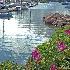 © Beth E. Higgins PhotoID# 10075125: Crosby Yacht Yard - Osterville