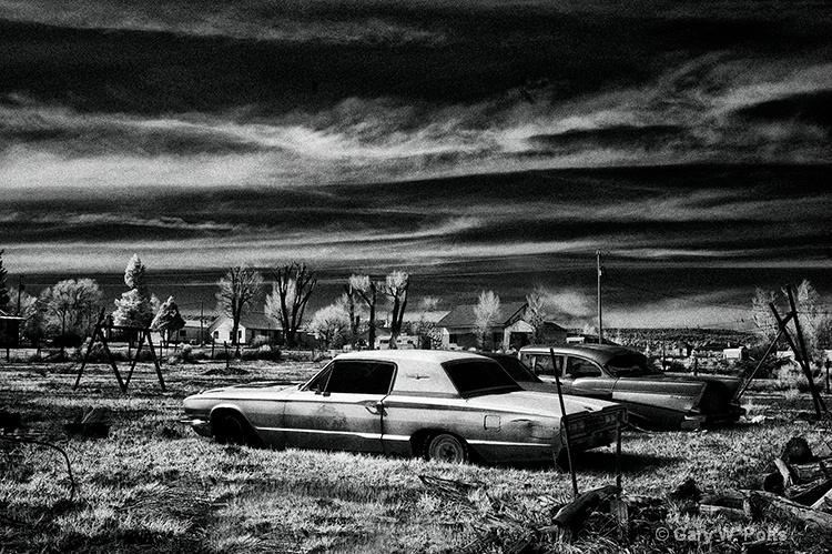 Backyard Leftovers - ID: 10121635 © Gary W. Potts