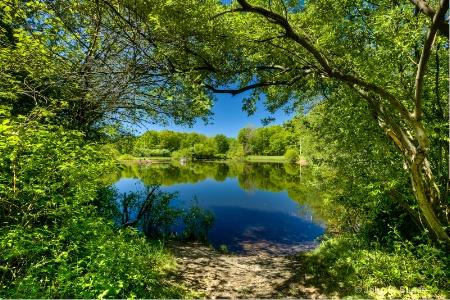 Eisenhower Park - Milford CT (mg 1049_48_50)