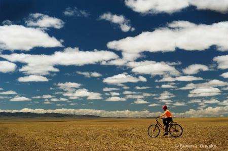 Herding in Mongolia