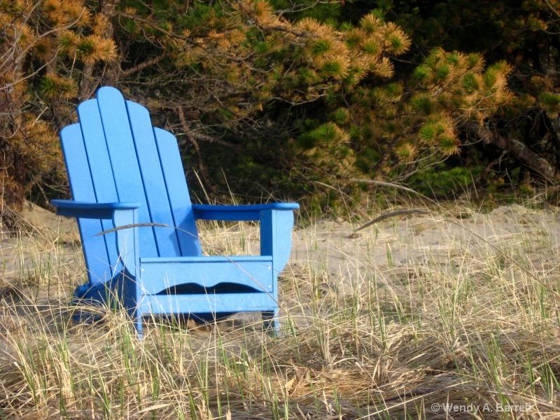 Spring seat at the beach - ID: 10189923 © Wendy A. Barrett
