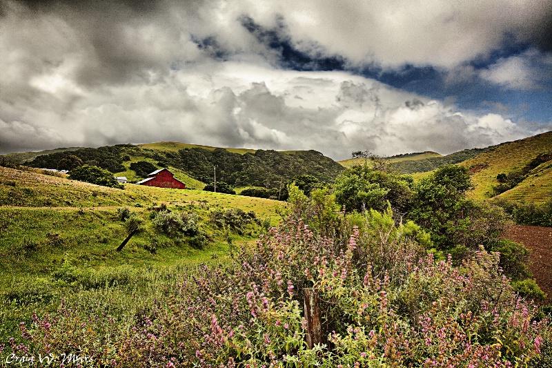 Foothills Farm - ID: 10212806 © Craig W. Myers
