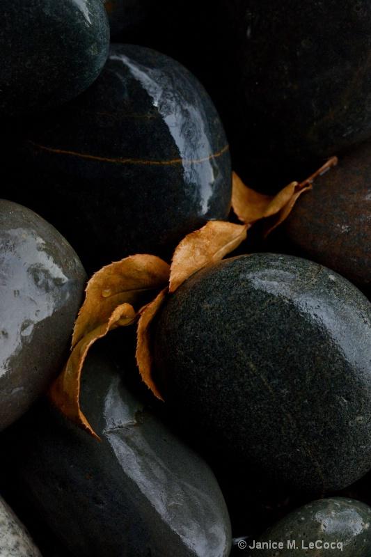 River Rocks - ID: 10247055 © Janice  M. LeCocq