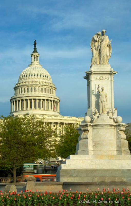 US Capitol and the Peace Monument with tulips - ID: 10274696 © Deborah H. Zimmerman