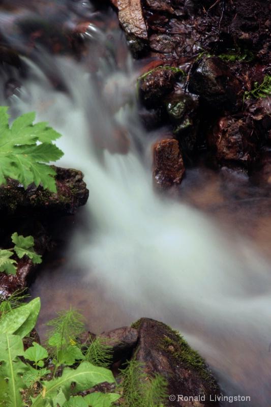 Soft Cascade - ID: 10277116 © Ron Livingston