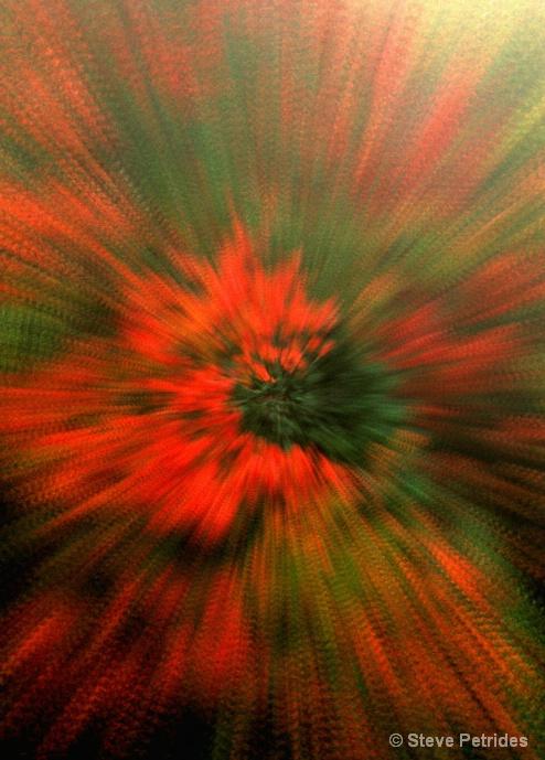 Exploding Maple - ID: 10291859 © Steven Petrides