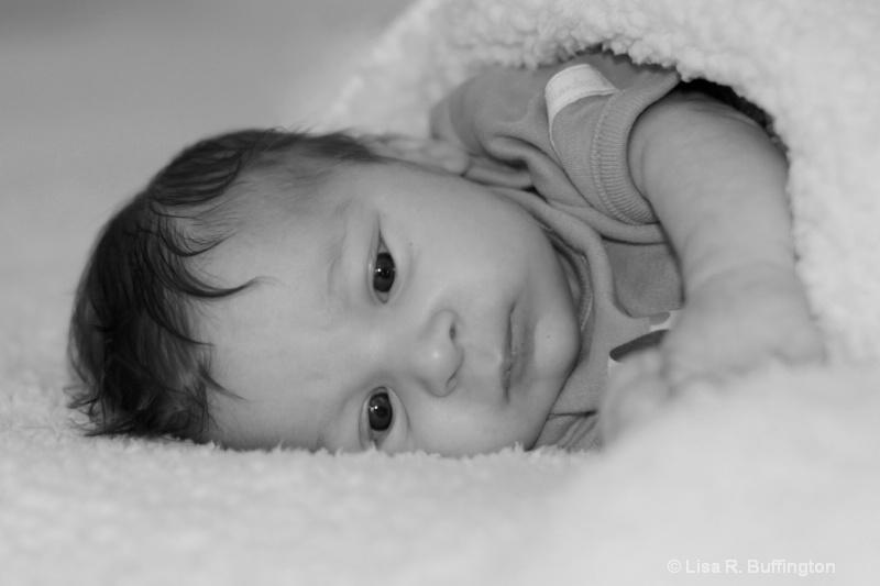 Sweet Baby Justin - ID: 10311727 © Lisa R. Buffington