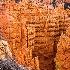 © Natasha Pliss PhotoID # 10319956: Bryce Canyon NP, Utah  (Sunset Point)