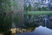 Merced River refl...
