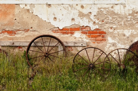 Wheel Yard