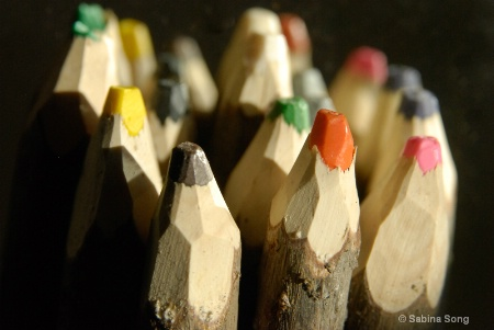 wooden colours