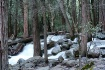 Bridalveil Falls ...