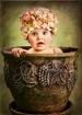 Blooming Baby Gir...