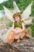 Faerie Princess P...