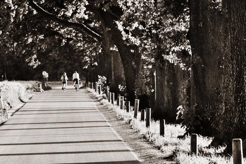 Cycling away in Salzburg suburbs