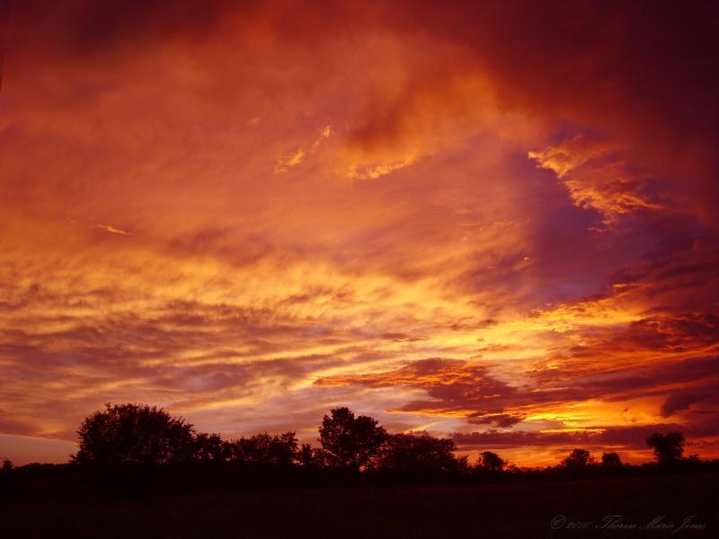Sunrise - ID: 10486300 © Theresa Marie Jones