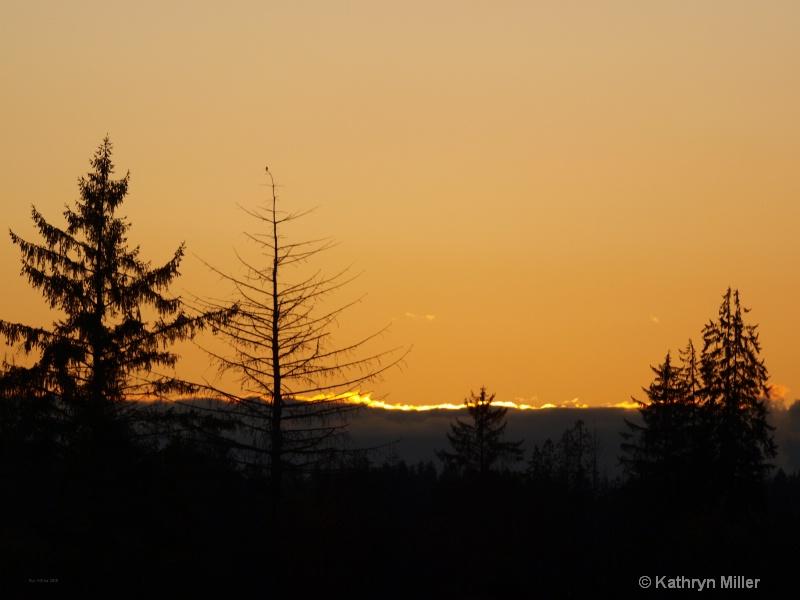 Sunset On Camano Island