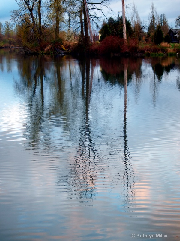 Snohomish River and Ebey Island Reflections