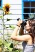Flowers & Cameras