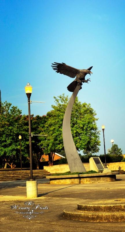"""""""Auburn's Eagle"""" - ID: 10502069 © Deborah L. Burgess"""