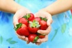 Strawberry Offeri...