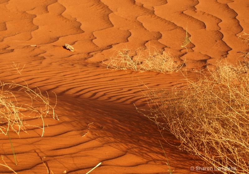 A Study in Sand - ID: 10508670 © Sharon L. Langfeldt