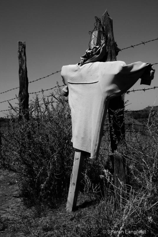 Hard Times in the Farmland - ID: 10508673 © Sharon L. Langfeldt