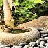 © John R. Grede PhotoID # 10523076: The Watering Hole (July 2010 Winner)
