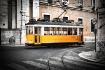 Lisboa Tram 04