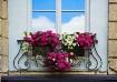 Window in Lyon