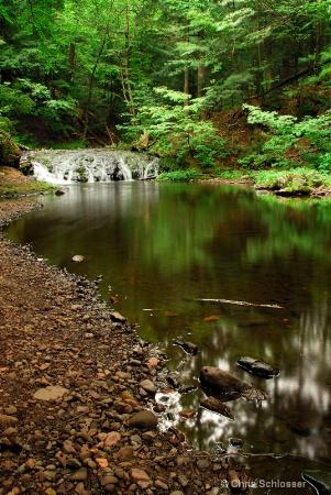 'Little Carp River'