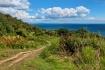 Coastal Path Over...