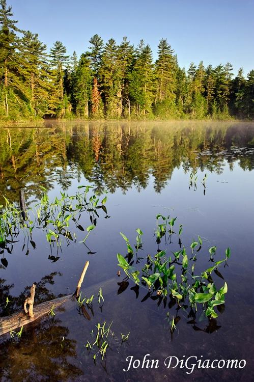 Osgood Pond