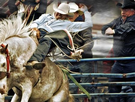 Rodeo Robustness