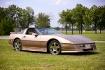 Gold Corvette!