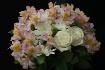 ~Floral II~