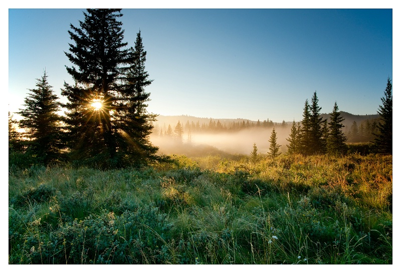Saskatchewan Cypress Hills West Block - ID: 10629766 © Jim D. Knelson