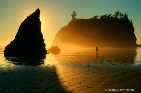 Photography Contest Grand Prize Winner - August 2010: Sunset at Ruby Beach