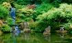 Royal garden II