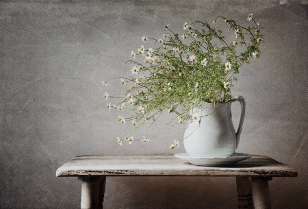 Wildflowers In A Pitcher