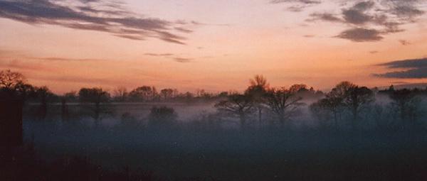 evening mist web