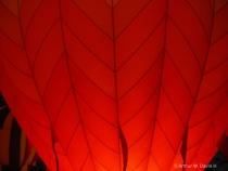 orange glo/lighting it up at night