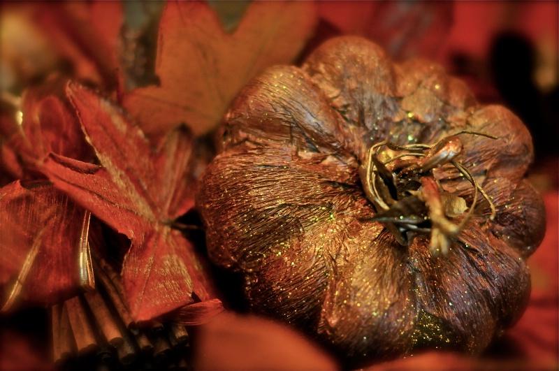 Welcome Fall!!!!