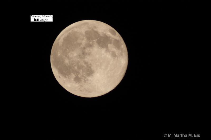 - ID: 10748328 © M.  Martha M. Eid